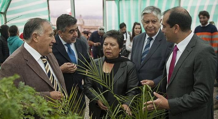 Gobierno entrega terreno para vivero forestal a for Vivero antofagasta