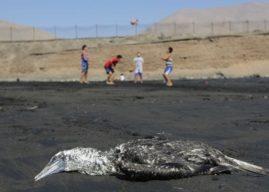 Suelos abandonados y contaminados: Una amenaza escondida en la región de Antofagasta
