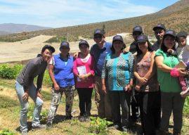Agricultores de La Serena buscan incorporar Agroecología a sus producciones