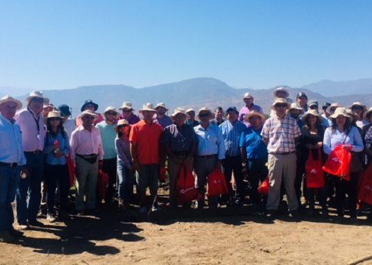 En la región de O'Higgins el programa Transforma HortiCrece realiza Día de Campo