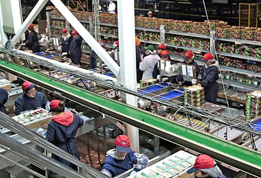 Senador Harboe llama a proteger a trabajadores agrícola durante la pandemia