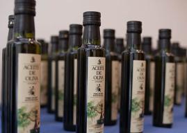 Región de Coquimbo: Universidad de La Serena presenta proyecto para potenciar calidad del aceite de oliva