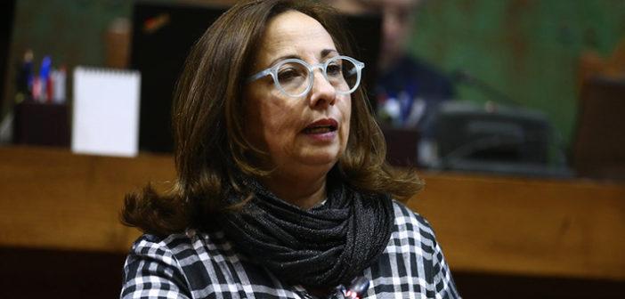 """Alejandra Sepúlveda: """"Sichel es un hombre vestido con piel de oveja"""""""