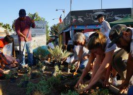 Huella Local y Municipios realizan levantamiento de información comunal del país para la reactivación económica