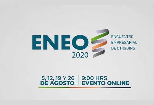 Región de O´Higgins: Más de 4 mil personas se conectaron en ENEO 2020