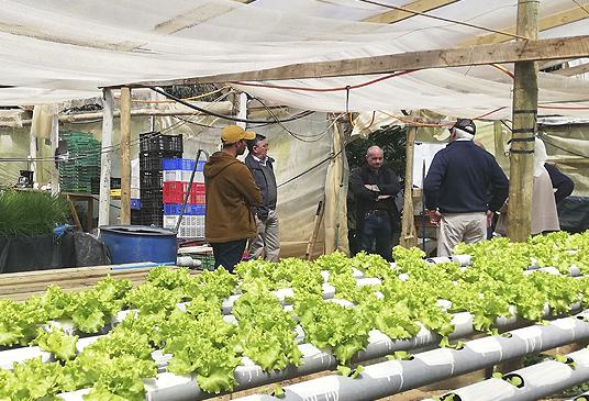 """""""Día del Campesino"""": El reconocimiento al sector que ha avanzado y contribuido al progreso de Chile"""