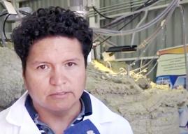 Universidad de Antofagasta gradúa al primer Doctor en Energía Solar de Chile