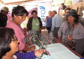[Arica y Parinacota] Abren programa para reactivar empresas de Pueblos Originarios