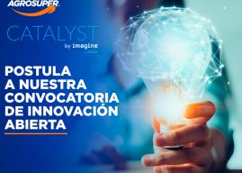 Programa Catalyst de Agrosuper busca emprendedores regionales para enfrentar los desafíos del futuro
