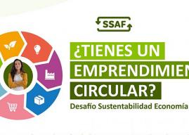 Región de O'Higgins: Lanzan programa que promueve la economía circular a través de emprendimientos femeninos